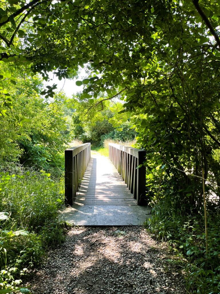 In der Natur. Ein Kiesweg führt aus dem Schatten auf eine von der Sonne beschienene schmale Brücke mit einem Holzgeländer, das Schatten wirft. Üppiges Grün ringsum.